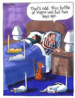 Funny Viagra Sex Cartoon Image Cats Dogs
