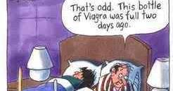 Free Viagra Cartoon Videos
