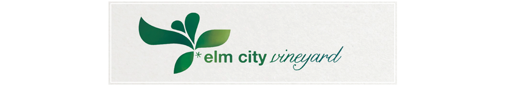 elm city vineyard