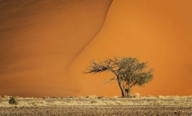 Пустыня Намиб — Соссусфлей, Намибия, Африка.