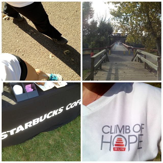 Climb of Hope 2013