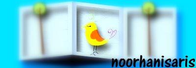 noorhani saris :)