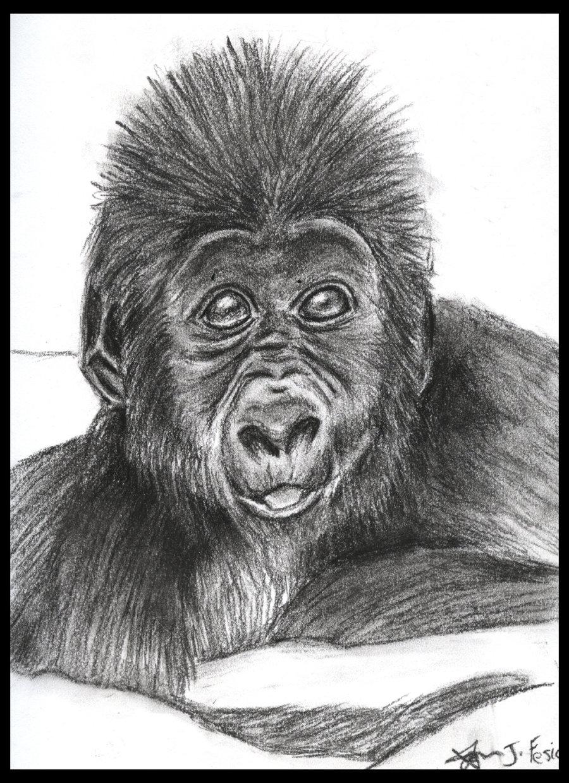 Top Macaco Babuino Tattoo Tattoo Tattoo'-s in Lists for Pinterest