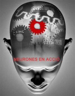 NEURONES EN ACCIÓ!