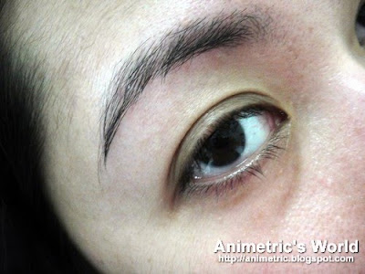 Animetric's eyebrows