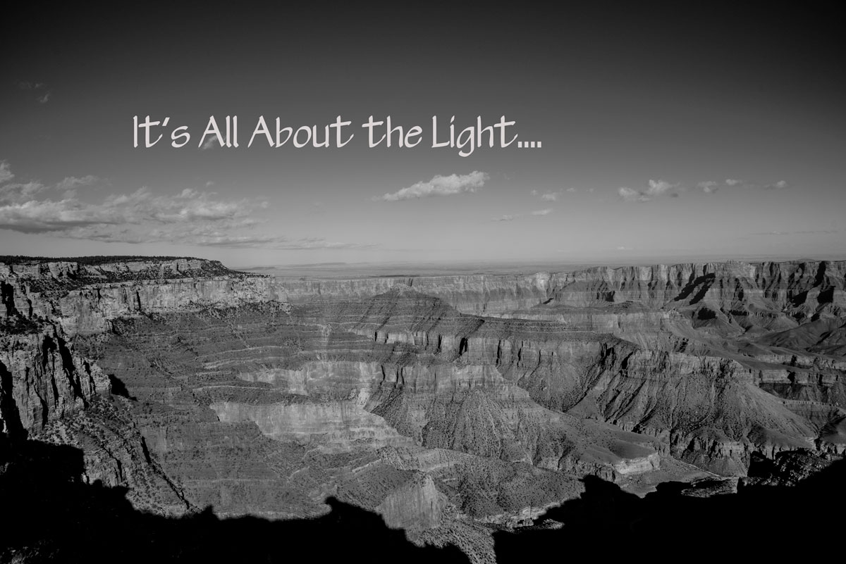 It's All About the Light...
