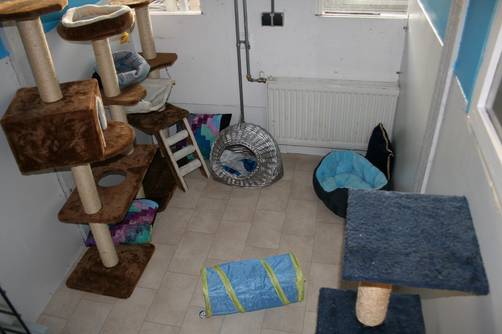 Muur blauwe keuken blauwe kamer kind obas