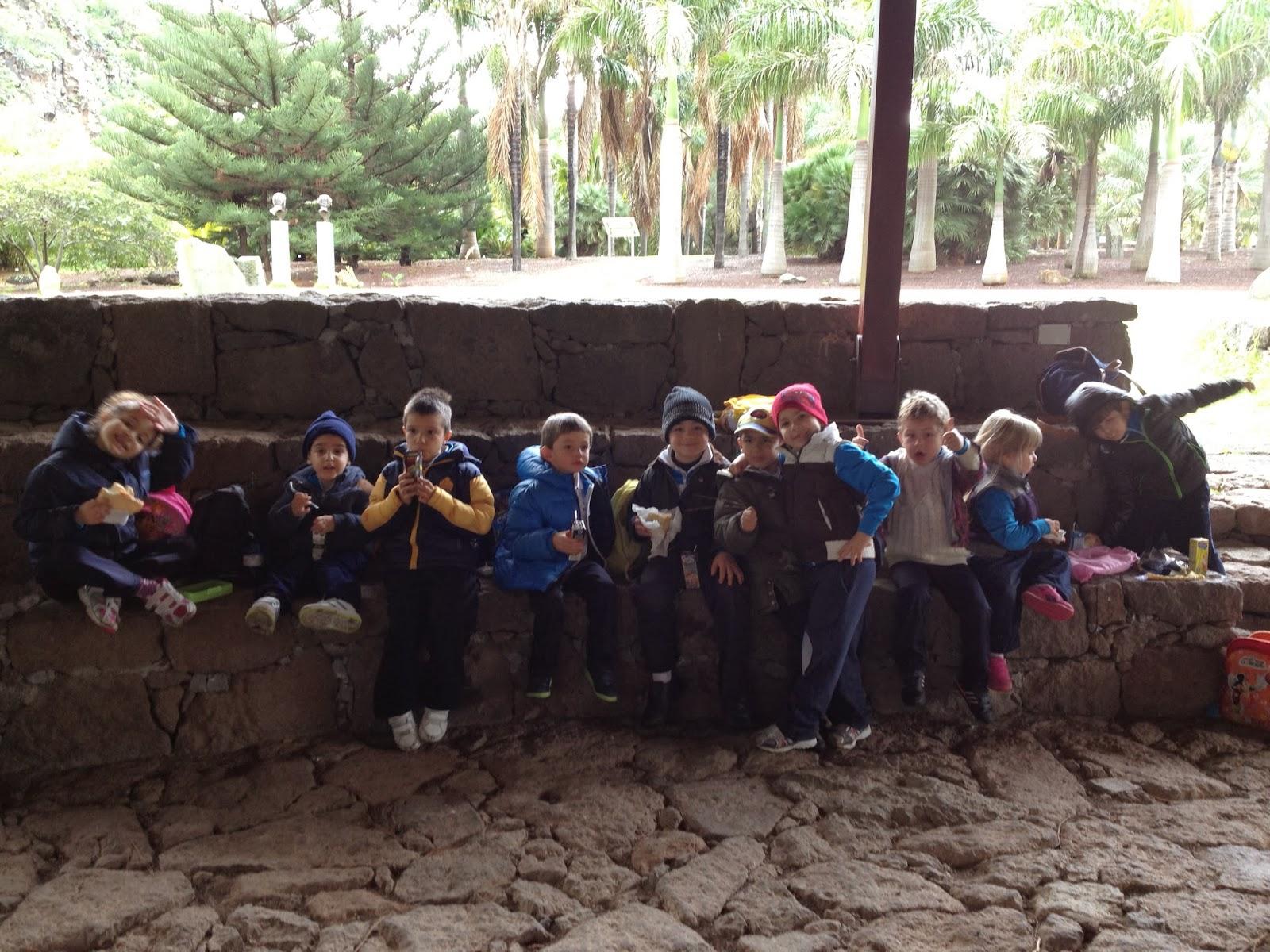 Ceip san antonio visita al jard n canario 21 02 14 for Jardin canario horario