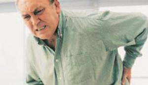 Sıradan kiraz: kullanışlı özellikleri ve kontrendikasyonları