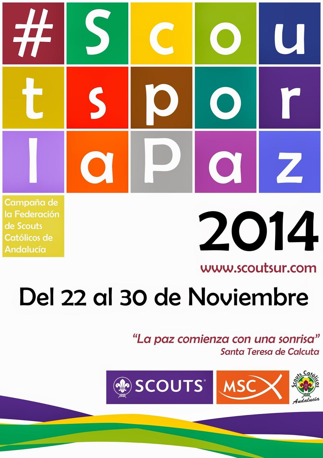 http://www.scoutsur.com/campana-scoutsporlapaz/