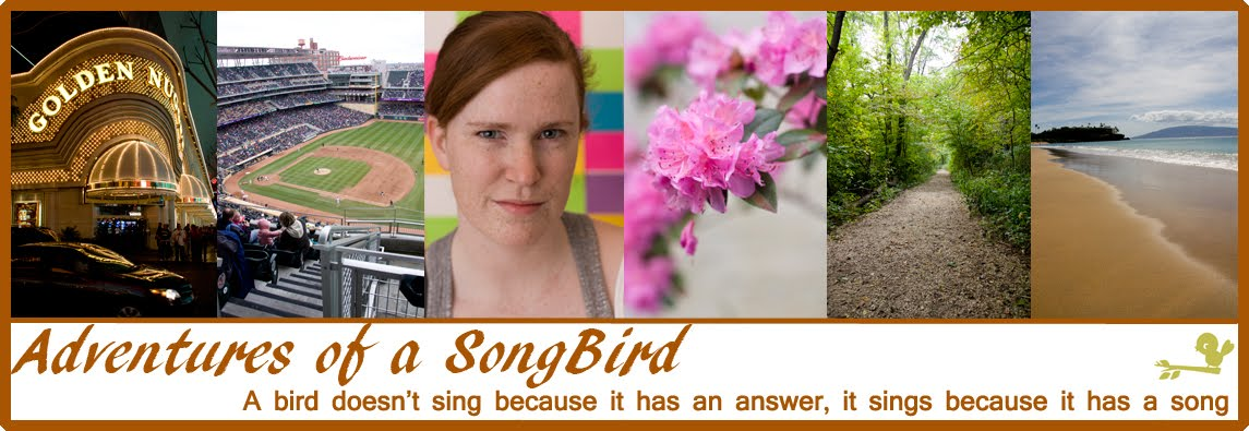 Adventures of a Songbird