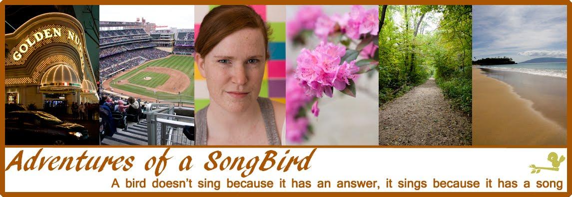 Adventures of a Songbird