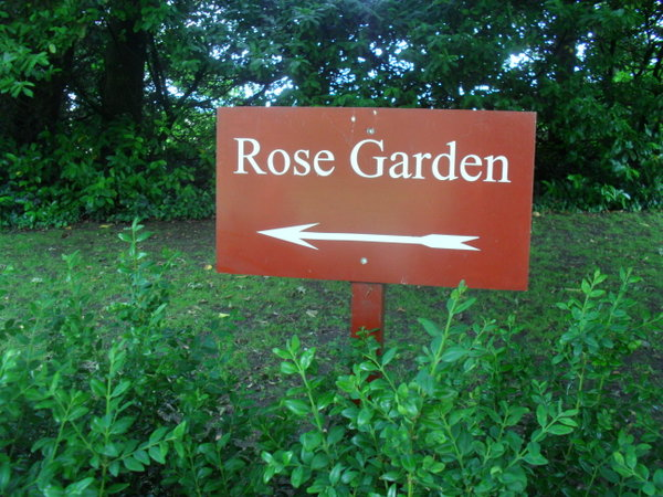 The Rose Garden In Arundel Was One Of Most Beautiful And Sweet Smelling I Have Visited Europe Lewes Castle English