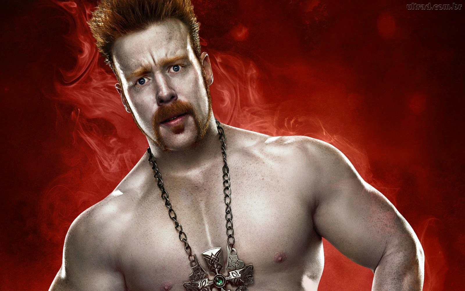 wwe sheamus wallpaper - free all hd wallpapers download