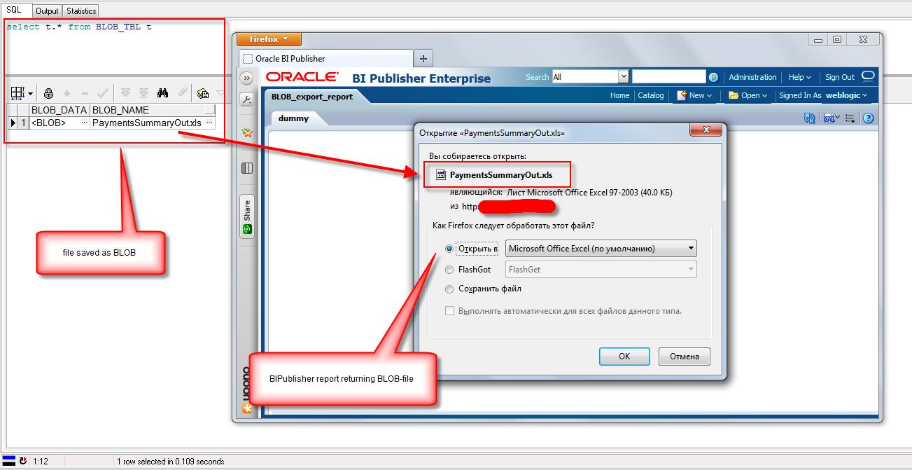 Oracle bi bi publisher 11g blob 1 blob bipublisher sql bip xml baditri Images