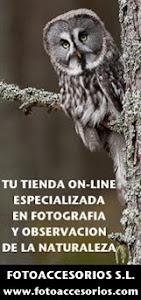 www.fotoaccesorios.com