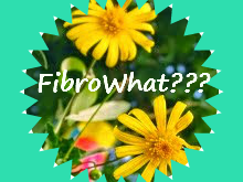 our newest blogger about fibromyalgia