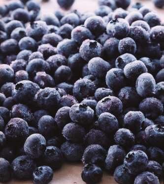 Việt quất (Blueberry)