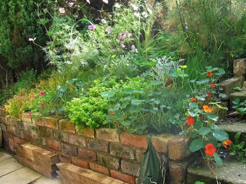 Herb Garden Design Ideas | Herb garden design