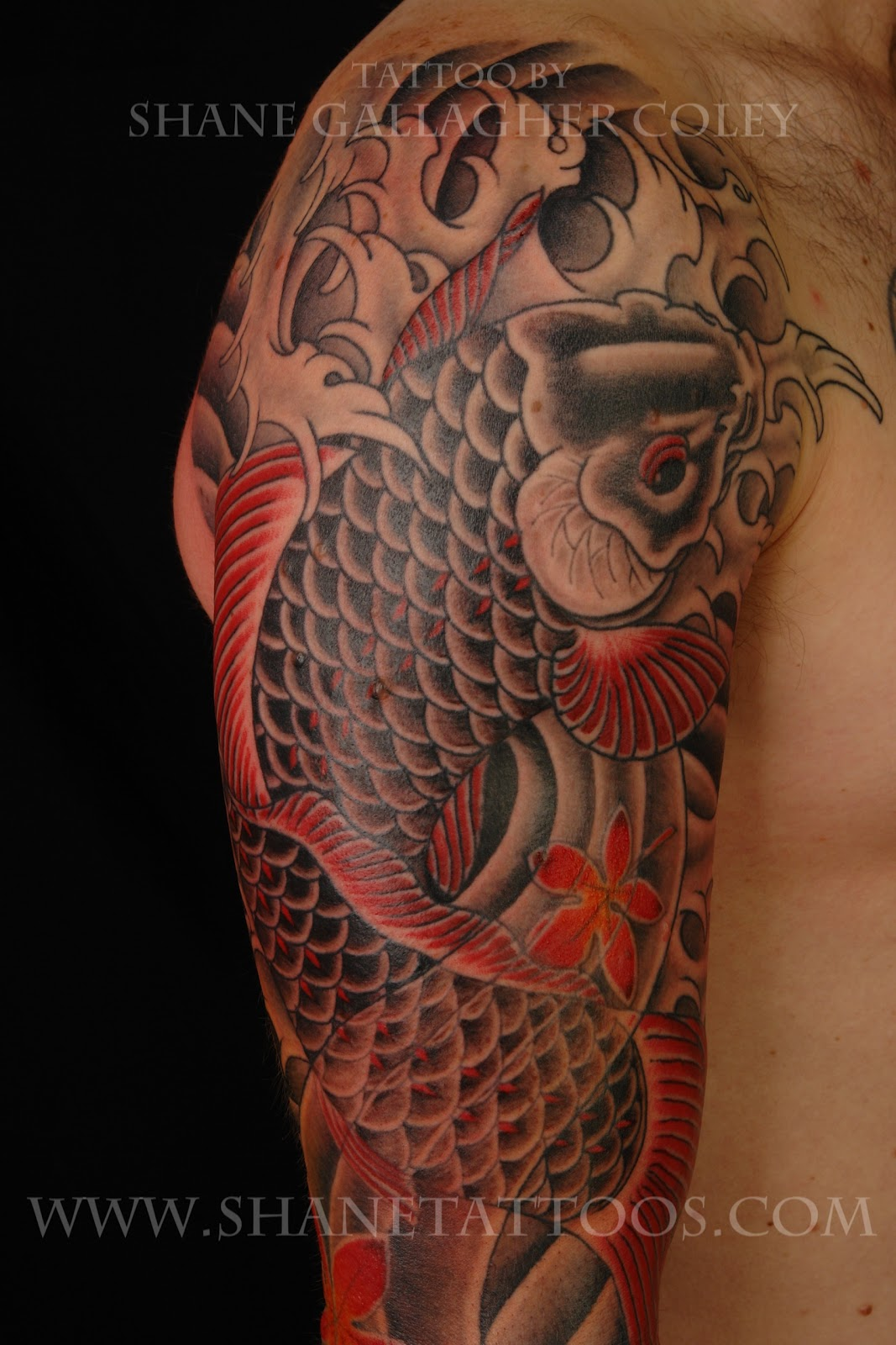 shane tattoos japanese koi tattoo