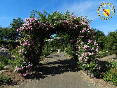 VILLERS-LES-NANCY (54) - La roseraie du Jardin botanique du Montet