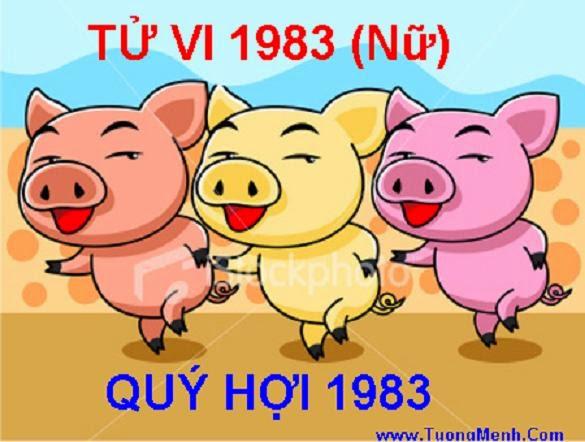 TU VI TUOI 1983 QUY HOI