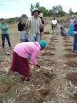 Teaching Farming God's Way in Lesotho