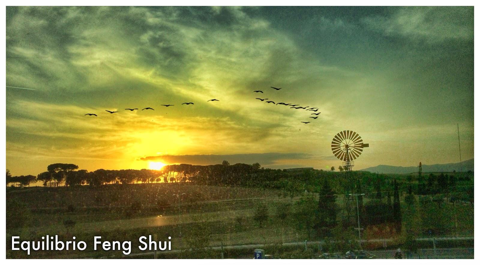 Feng shui y arquitectura decoraci n - Arquitectura feng shui ...