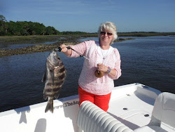 Biggest Sheepshead 2015