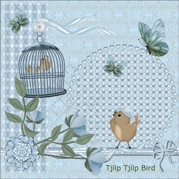 July 2016 Tjilp Tjilp Bird