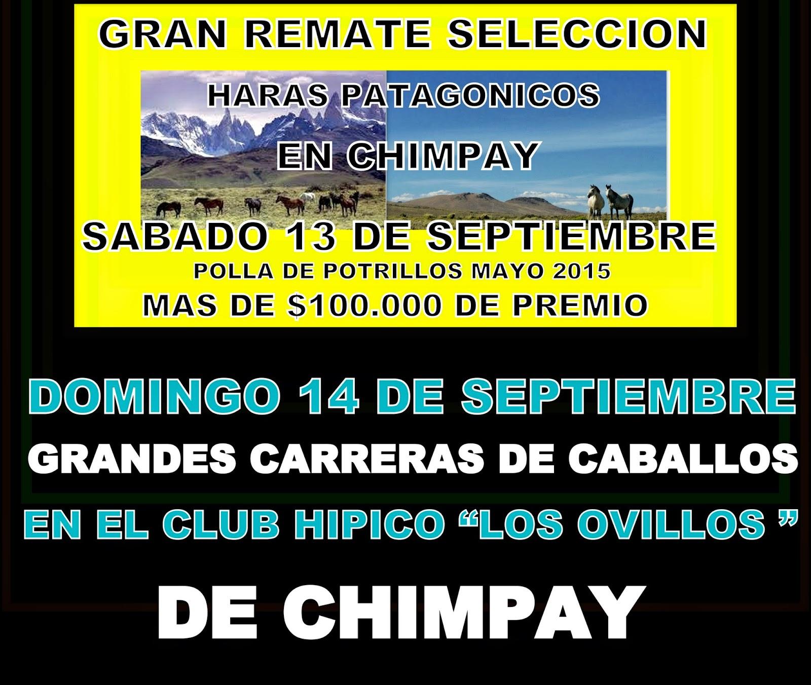 http://turfdelapatagonia.blogspot.com.ar/2014/08/13-y-1409-carreras-de-caballos-y-remate.html