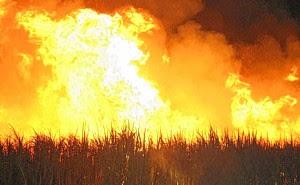 Cetesb proíbe queima em 18 cidades da RMC. Exceto Itatiba