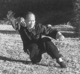 Mestre Chan Kowk Wai treinando