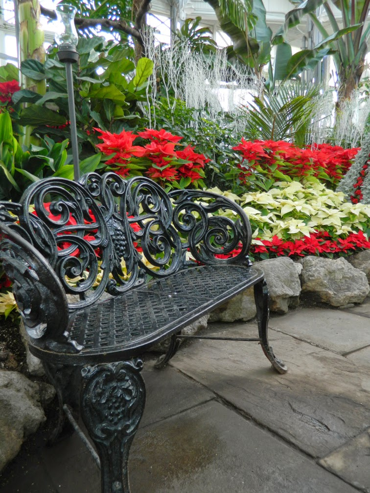 Allan Gardens Conservatory Christmas Flower Show 2014 cast iron bench by garden muses-not another Toronto gardening blog