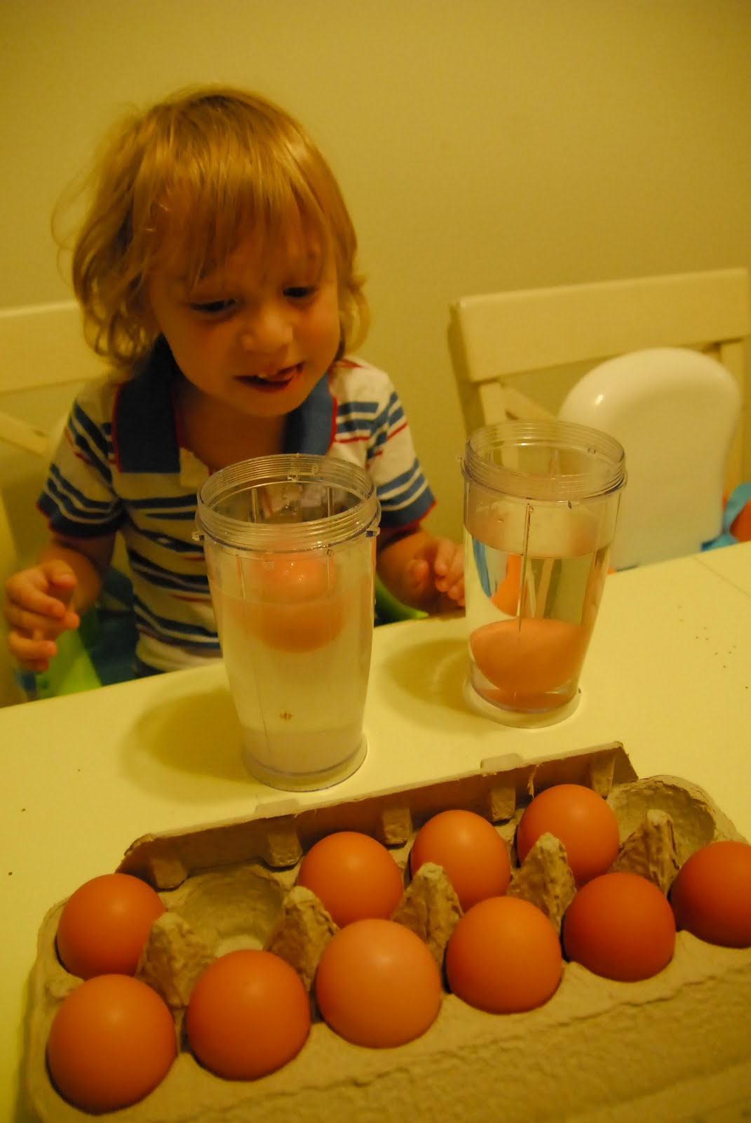 how to tell fresh eggs in water