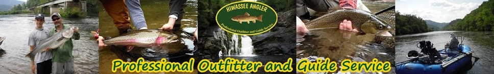 Hiwassee Angler