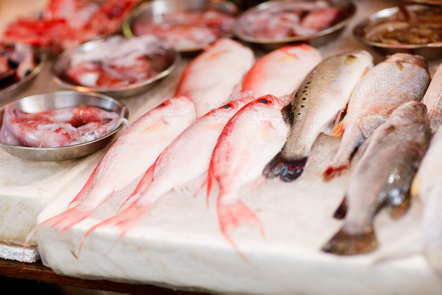 Better than a bistro is your fish really fresh for Flash freeze fish