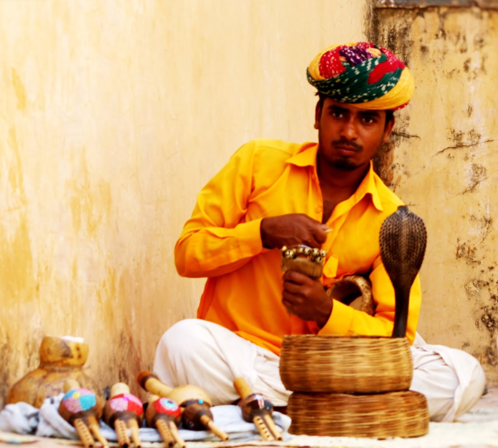 Snake Charmers Of India Enigmatic India
