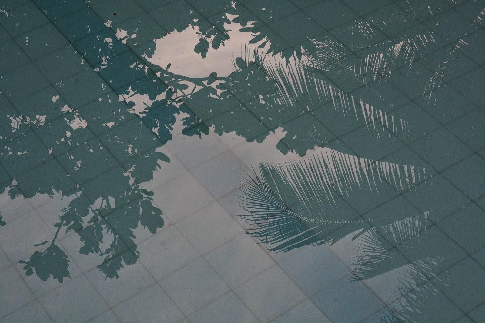 Sombra e água fresca, by Marcanti / PhotoConversa