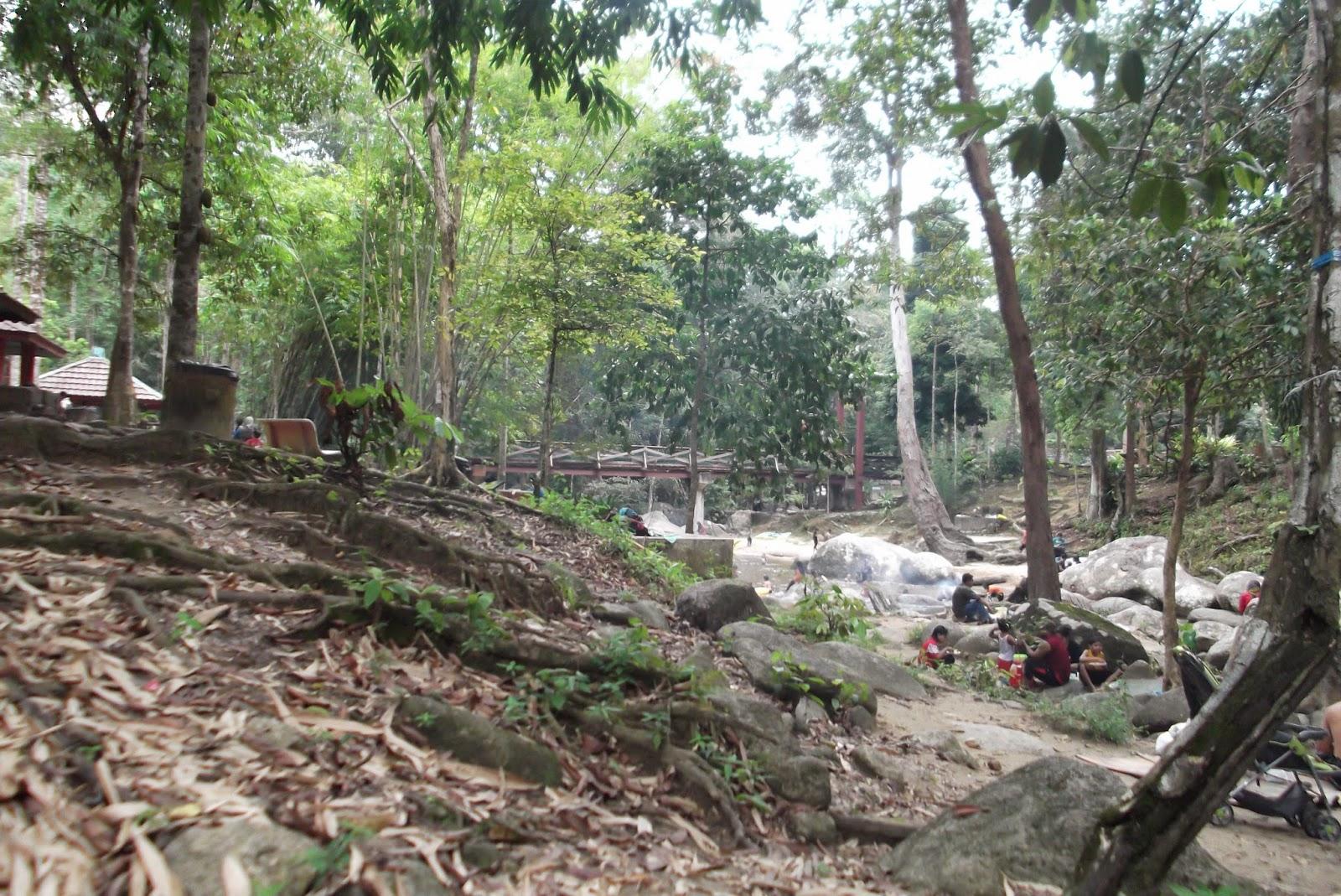 Hutan Lipur Ulu Kenas