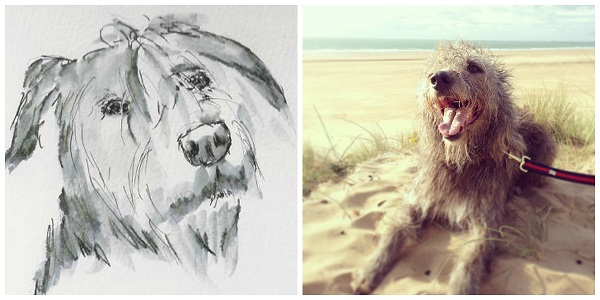 Sketching William the lurcher