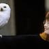Correspondente Pottermore: ''Fãs na exibição de Harry Potter e a Pedra Filosofal me fizeram chorar''