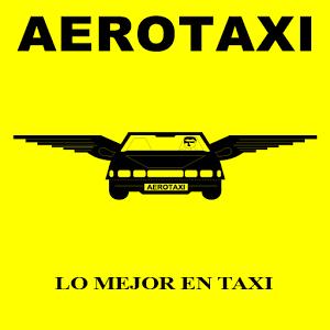 AERO TAXI 809 686 1212