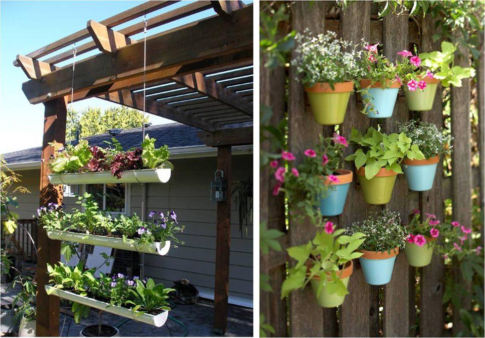 jardim vertical xaxim:Escadex – Escadas para sótão e alçapão: Jardins verticais