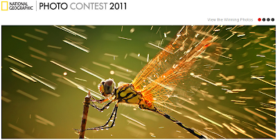 aAtional Geographic Photo Contest