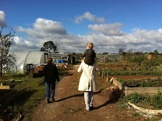 a stroll through the allotments.