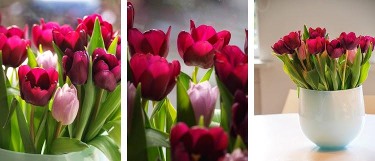 Gør huset klar til foråret med tulipaner