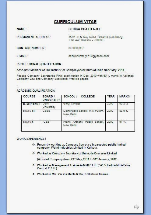 Indian Professional Resume Format Resume Format Examples Of