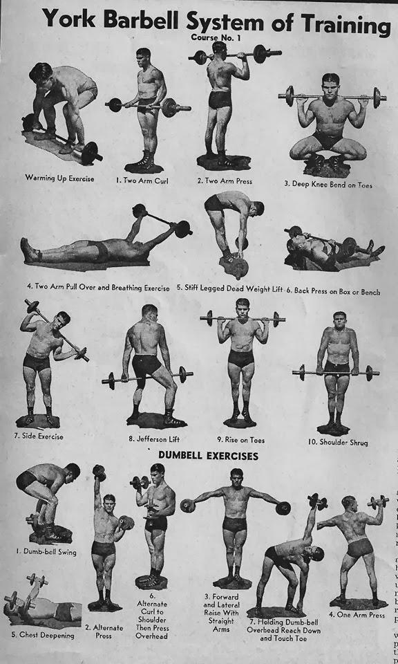 School Bodybuilding Charts. Compiled by Veeraj Goyaram ~ BODYBUILDING