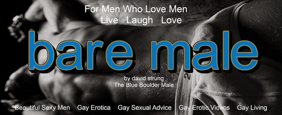 Blue Boulder Male